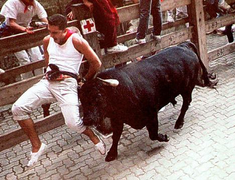bulls with room to run on the stock market