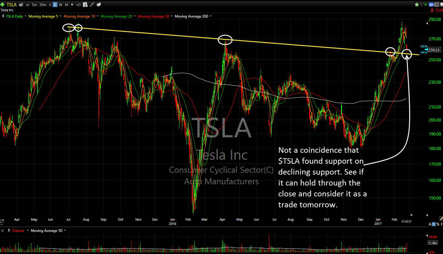 Buying tesla stock options