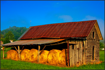 hay is in the barn