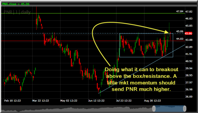 pentair pnr long at 45