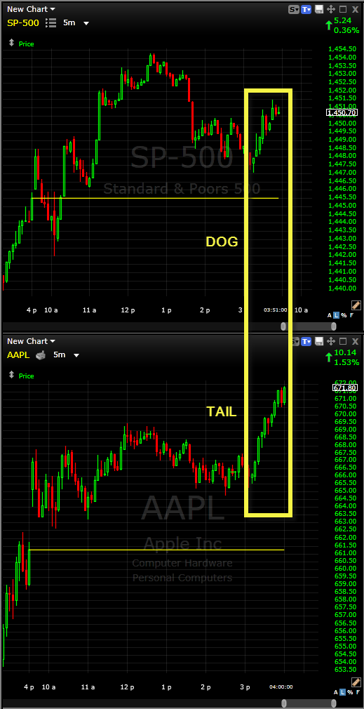tail wagging the dog or dog wagging the tail aapl and spx